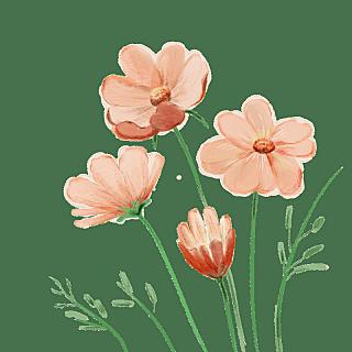 手绘-水彩花卉植物贴纸7