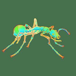 国潮风-昆虫元素贴纸-蚂蚁
