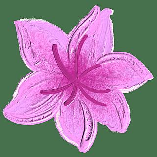 手绘蜡笔-油画棒花朵贴纸-花朵8
