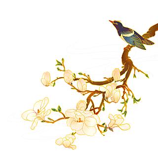 手绘-中国风植物花卉贴纸-花鸟