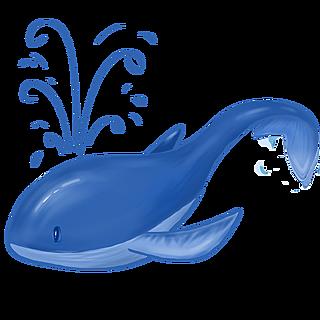 手绘-航海创意贴纸-鲸鱼