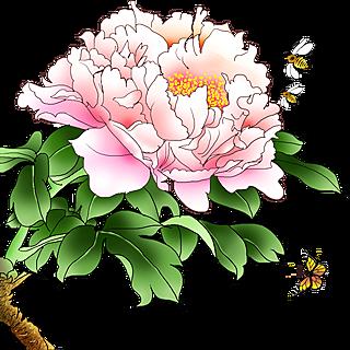 中国风植物花卉贴纸-牡丹