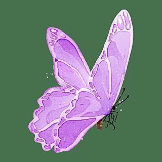 水彩-小昆虫蝴蝶元素