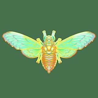 国潮风-昆虫元素贴纸-蝉