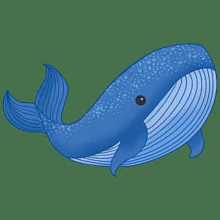 手绘-动物元素贴纸-鲸鱼