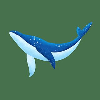 手绘-鲸鱼动物元素常规贴纸3