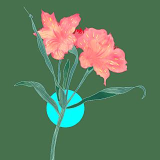 手绘-水彩花卉植物贴纸8