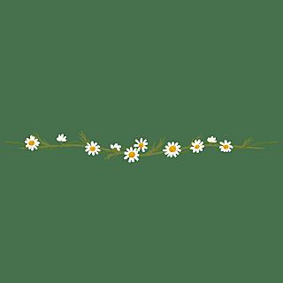 卡通风树叶花朵文章分割线贴纸10