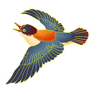 中国风-手绘动物插画贴纸-鸟