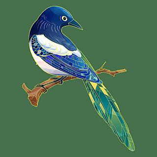 中国风-动物贴纸-鸟