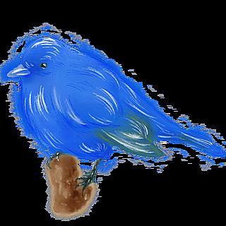 手绘-水彩动物贴纸-鸟