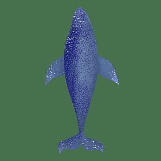 手绘-鲸鱼动物元素常规贴纸2