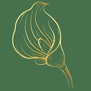 手绘-奢华金属花朵贴纸-马蹄莲