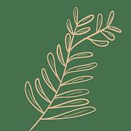 抽象风简约装饰贴纸-SVG-叶片3