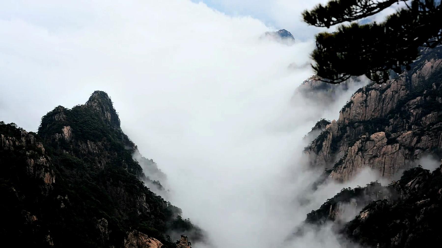 黄山峡谷云海