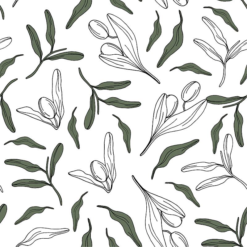 橄榄,式样,华丽的,摆拍,熟的,壁纸,植物群,成分,装饰物,绘制