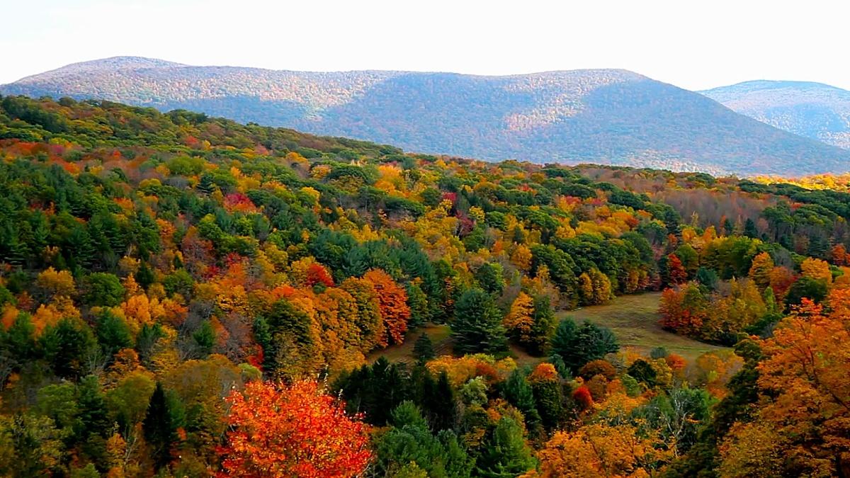 伯克郡的秋天