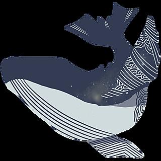 中国风元素主题-鲸鱼