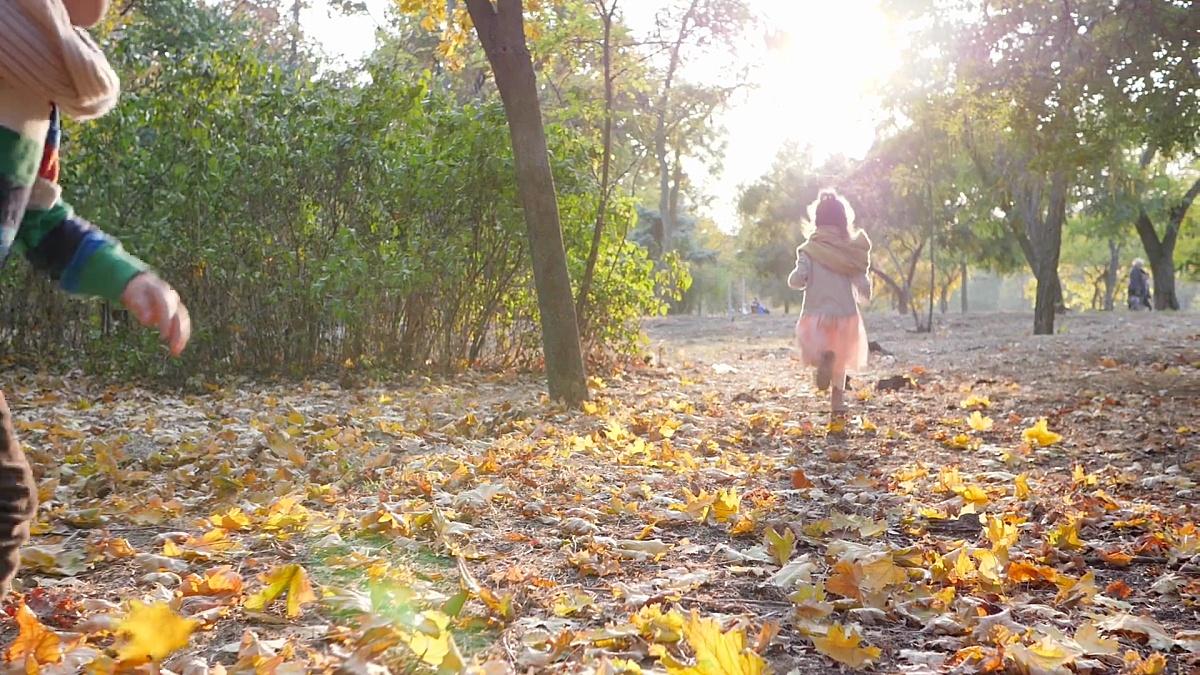 在暖和的天气里,小女孩和小男孩带着她的狗在秋天公园的背光下慢跑
