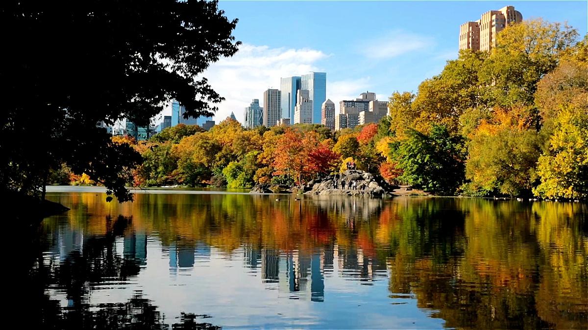 秋天在纽约市中央公园的湖边