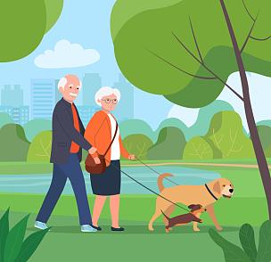 公园,狗,绘画插图,扁平化设计,男人,老年女人,矢量,伦敦城,老年男人,丈夫
