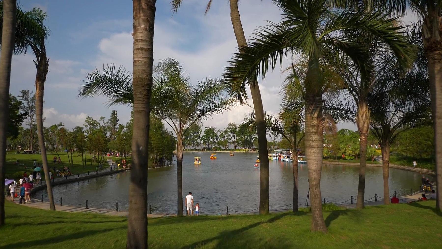 晴天珠海市名园湖全景 中国