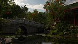 阳光明媚的珠海公园金鱼塘大桥慢动作全景 中国