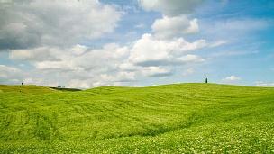 绿色田野上的T/L云景