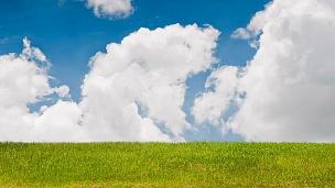 郁郁葱葱的天空中的青草