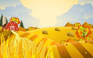 秋天,自然美,景象,农场,玉米,非都市风光,户外,季节,树,收获