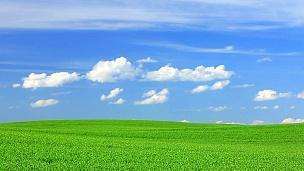 碧绿的田野和蔚蓝的天空