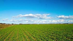 高清运动延时 乡村场景上的云景