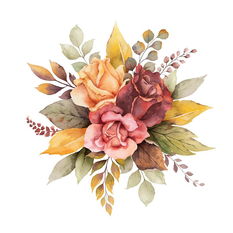 秋天,水彩画,玫瑰,九月,请柬,十月,周年纪念,婚礼,排列,问候