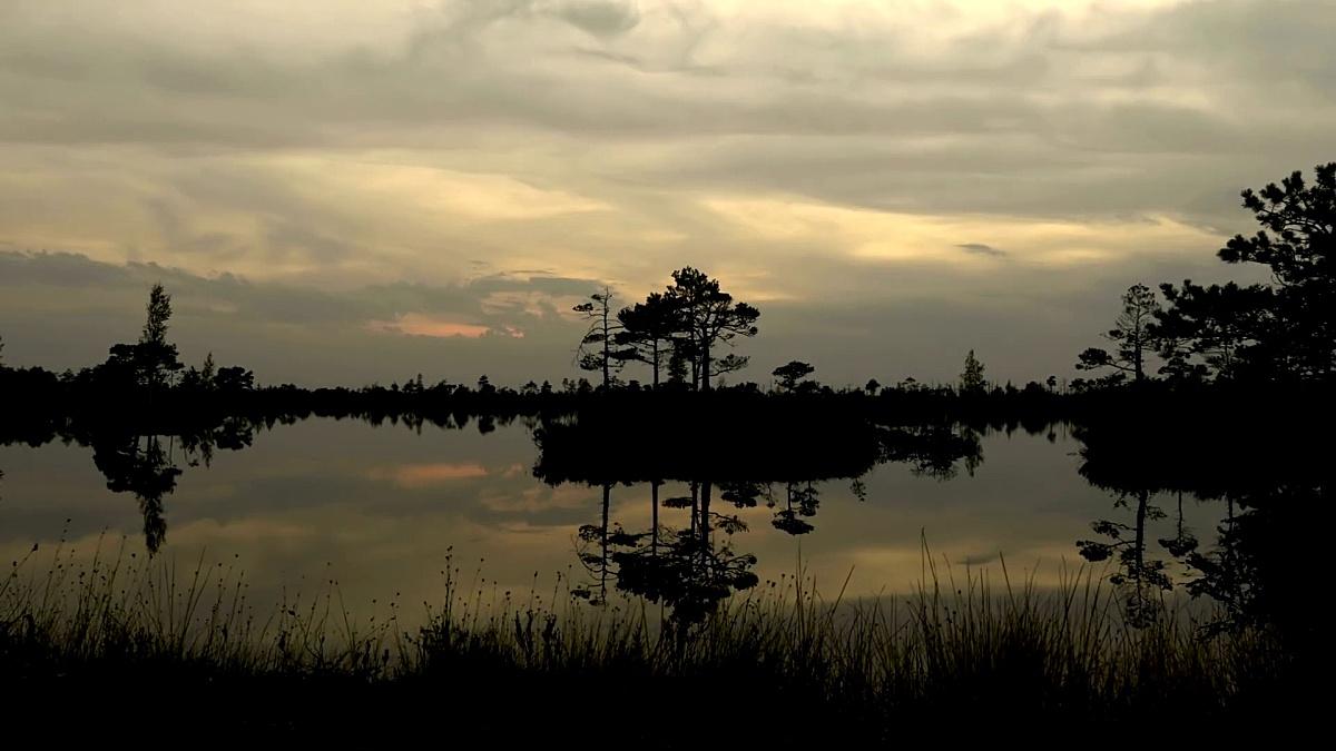 岛屿上的日落。秋天的白天。平滑的推车射击。