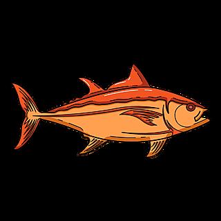 海洋生物元素主题素材-鱼