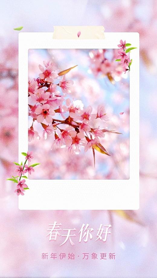 春天你好晒照实景贴纸植物花卉