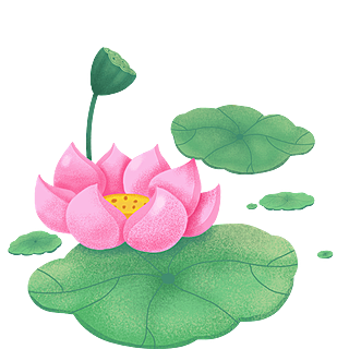手绘-中秋节氛围元素3-荷花