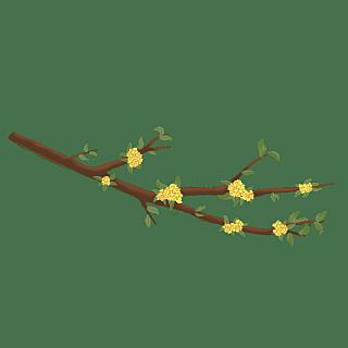 手绘-中国风元素-桂花枝