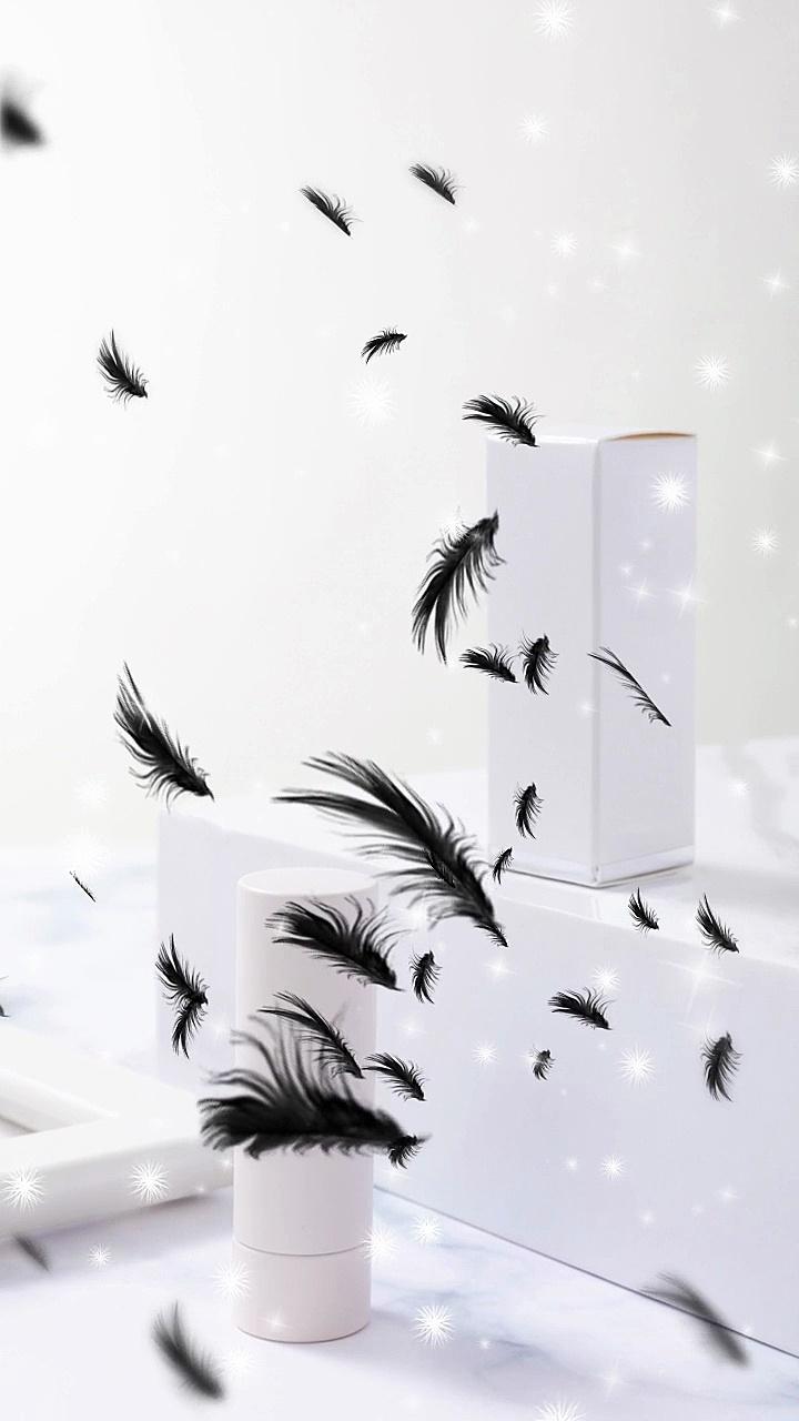 轻动效产品展示黑羽毛效果